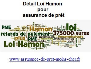 Comment définir la loi de Consommation dite loi Hamon ?